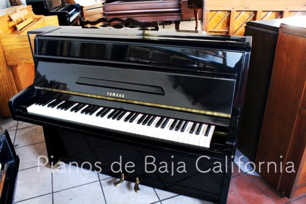 Pianos de Baja California - Pianos Tijuana - Pianos Mexicali - Pianos Ensenada 10