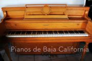 Pianos de Baja California - Pianos Tijuana - Pianos Mexicali - Pianos Ensenada 16