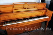 Pianos de Baja California - Pianos Tijuana - Pianos Mexicali - Pianos Ensenada 18
