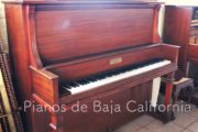 Pianos de Baja California - Pianos Tijuana - Pianos Mexicali - Pianos Ensenada 1