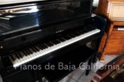 Pianos de Baja California - Pianos Tijuana - Pianos Mexicali - Pianos Ensenada 19