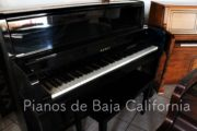 Pianos de Baja California - Pianos Tijuana - Pianos Mexicali - Pianos Ensenada 20