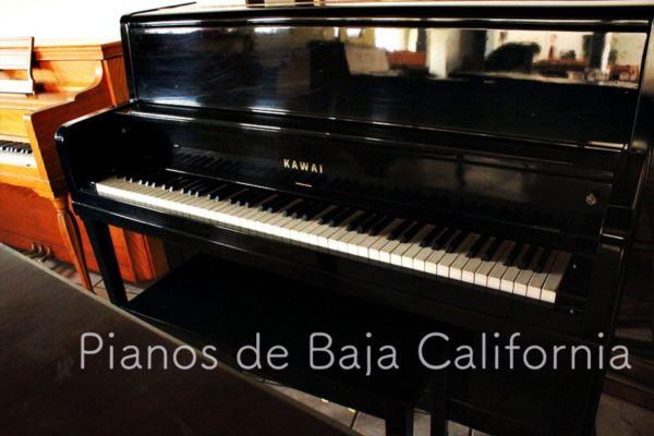 Pianos de Baja California - Pianos Tijuana - Pianos Mexicali - Pianos Ensenada 21