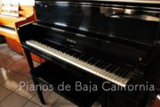 Pianos de Baja California - Pianos Tijuana - Pianos Mexicali - Pianos Ensenada 22
