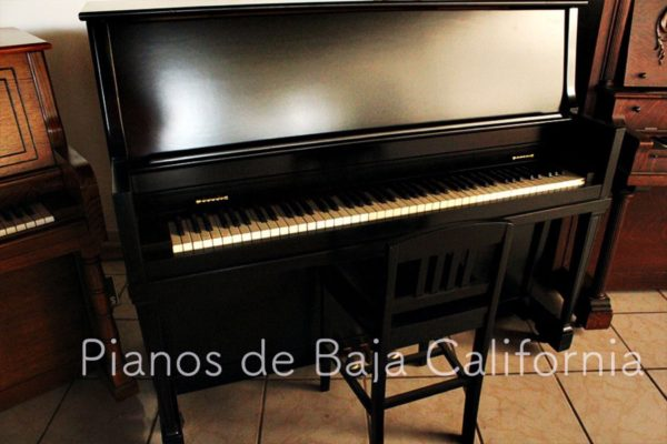Pianos de Baja California - Pianos Tijuana - Pianos Mexicali - Pianos Ensenada 26