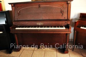 Pianos de Baja California - Pianos Tijuana - Pianos Mexicali - Pianos Ensenada 28