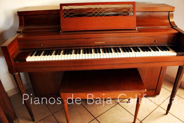 Pianos de Baja California - Pianos Tijuana - Pianos Mexicali - Pianos Ensenada 31