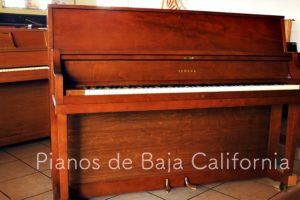 Pianos de Baja California - Pianos Tijuana - Pianos Mexicali - Pianos Ensenada 32