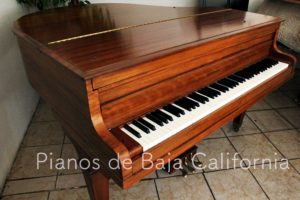 Pianos de Baja California - Pianos Tijuana - Pianos Mexicali - Pianos Ensenada 45